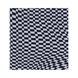 BW Escher fabric swatch